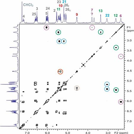 proton 2D cosy NMR spectrum